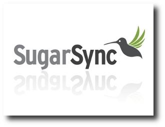1. SugarSync
