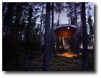 1. Treehotel