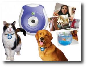 4. Pet camera