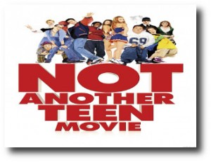 6. Not Another Teen Movie