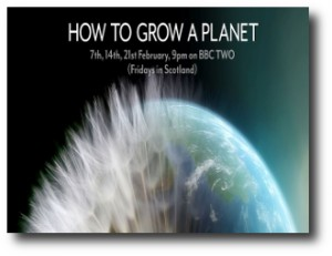 5. How to grow a planet