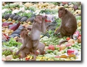 9. Monkey Buffet Festival