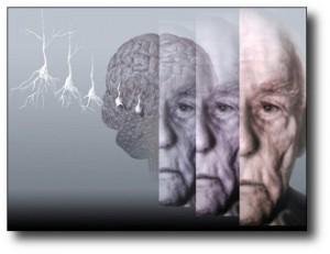 9. Previene la enfermedad de Alzheimer