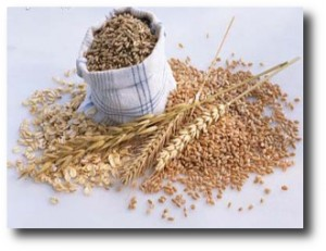 6. Cereales integrales