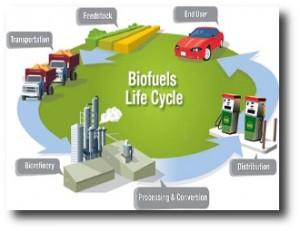 8. Energ+¡a de Biocombustibles