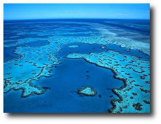 Los 10 arrecifes más hermosos en el mundo