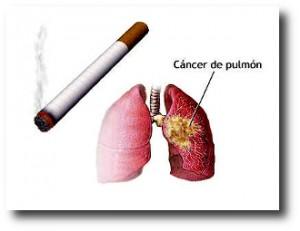 2. Cancer