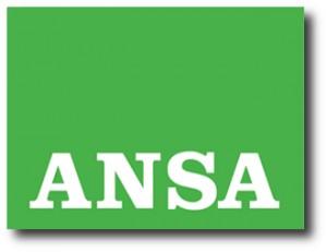 4. ANSA
