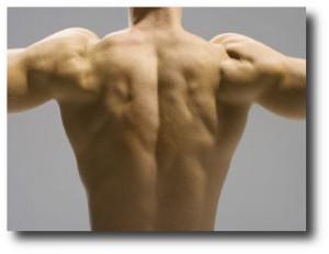 5. Fortalecer los musculos