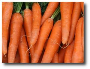 3. Znahorias