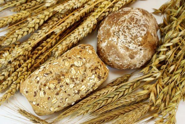 Germen de trigo