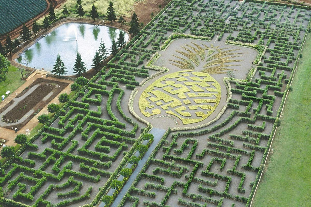 Los 10 laberintos m s impresionantes del mundo for Jardin laberinto