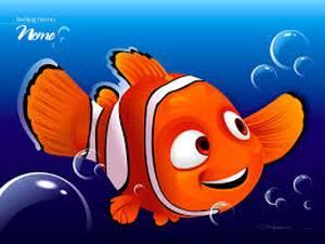 9. Buscando a Nemo