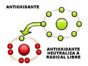 3. Antioxidantes