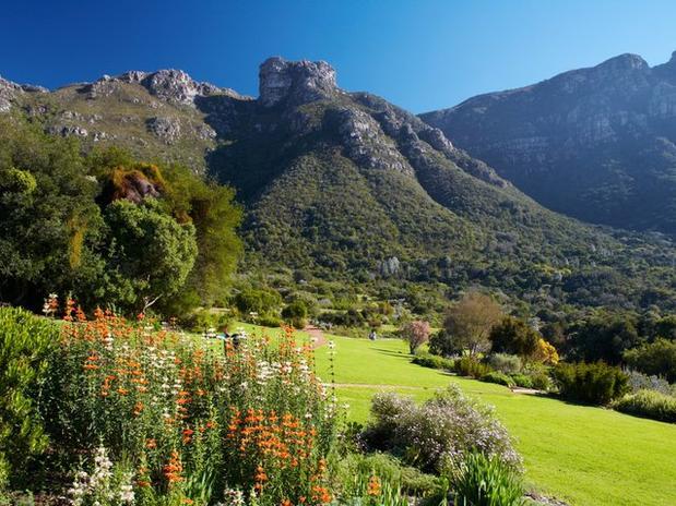 Jardín botánico de Kirstenbosch