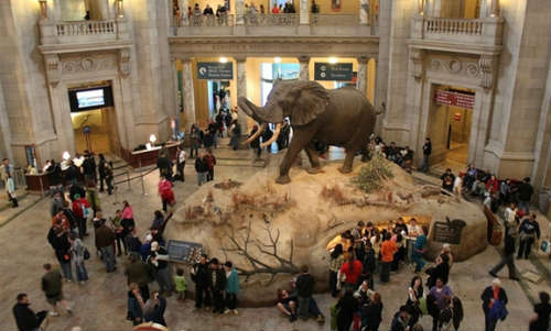 National Museum of Natural History. Washington