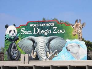 Los 10 mejores zoológicos en el mundo