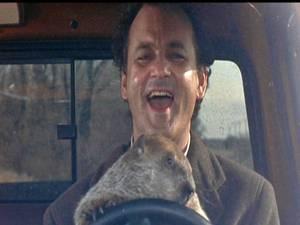 Bill Murray es un actor estadounidense, particularmente conocido por hacer películas de comedia, aunque en sus últimos trabajos también lo hemos visto actuar en películas de otra temática