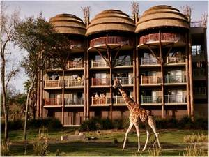 9. DisneyÔÇÖs Animal Kingdom Lodge Resort