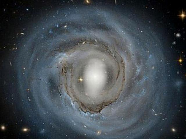 La galaxia espiral 4921