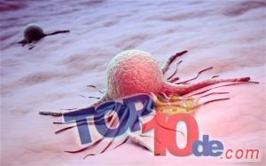 4. combaten el cancer