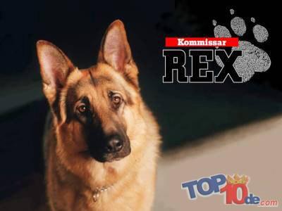 Comisario Rex
