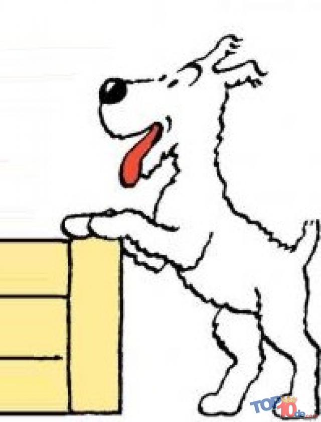 El perro de Rin Tin Tin